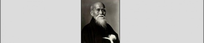 aikido springfield mo